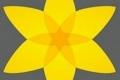 kwiatek_539x600