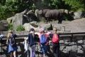 zoo6_800x535